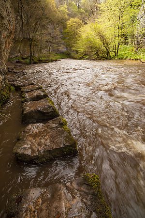 Submerged stepping stones in Chee Dale