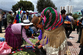Coca growers distribute coca leaves ( Erythroxylum coca ) at an event promoting traditional uses of the coca leaf , La Paz , Bolivia