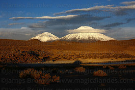 Payachatas volcanos shortly before sunset , Lauca National Park , Region XV , Chile