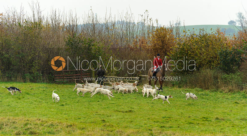 The Cottesmore Hunt at Dene Bank Farm 3/12 photos
