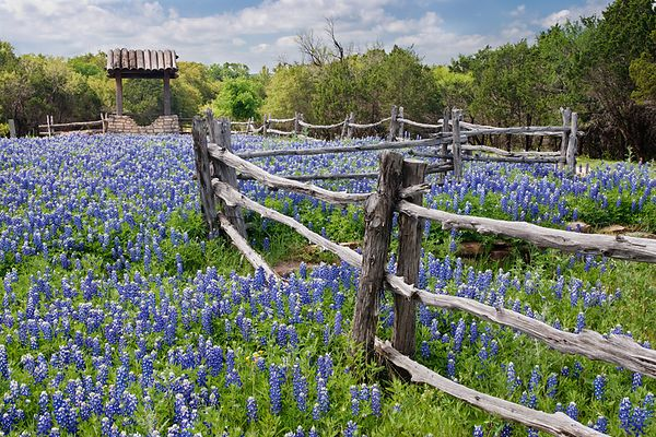 Texas Highways Spring 2019 photos