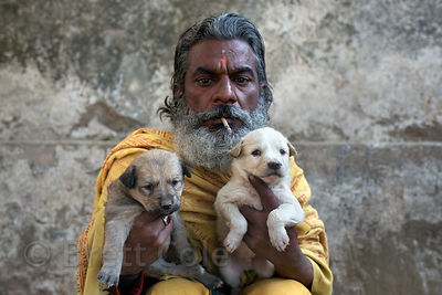 puppies in india