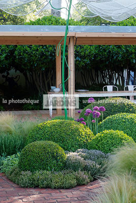 Ball shaped, Buxus, Contemporary furniture, Contemporary garden, Digital, Garden construction, Garden table, Pergola, Sphere shaped, Terrace, Topiary, Common Box, Contemporary Terrace, Wooden Terrace