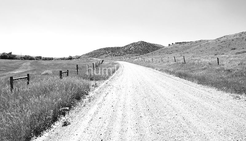 Black and white image of gravel road into the distance