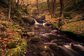 Mid-autumn in Padley Gorge