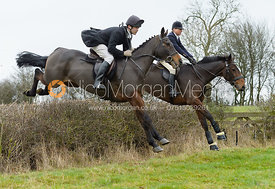 Nicky Hanbury jumping a hedge by Puss's Bushes - The Cottesmore at The Fox and Hounds