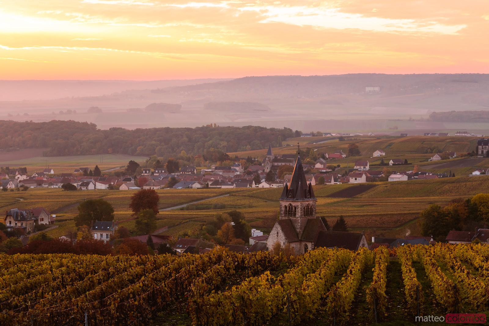 Misty sunrise over vineyards in autumn, Champagne, France