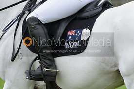 Natalie Blundell and ALGEBRA - cross country phase,  Land Rover Burghley Horse Trials, 6th September 2014.