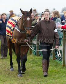 Race 7 - Open Maiden Div 1 - Cottesmore at Garthorpe 3/3/13