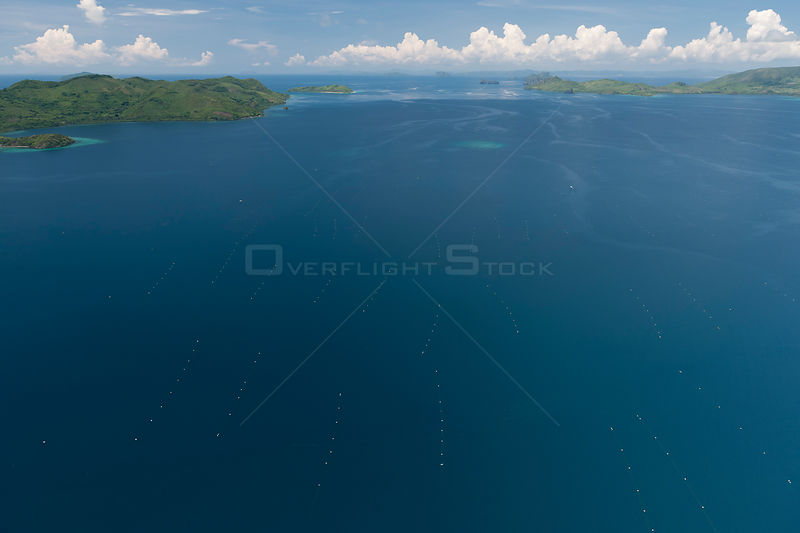 Aerial view of Oyster nets and cages for cultured Golden South Sea pearl farming, the Jewelmer Pearlfarm, Philippines, May 2009