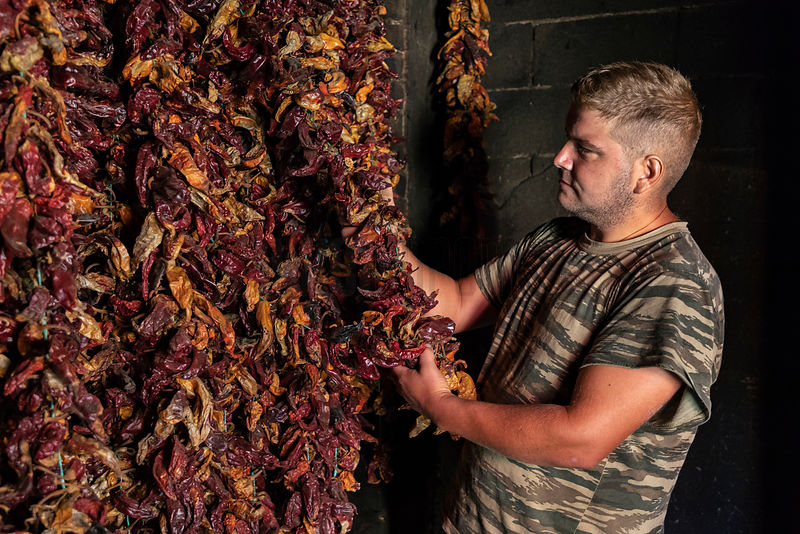 A Pepper Farmer Inspects his Crop in a Drying Room