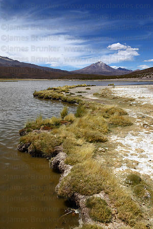Lake Arabilla, Cabaray / Cabaraya volcano in background, Isluga National Park , Region I , Chile