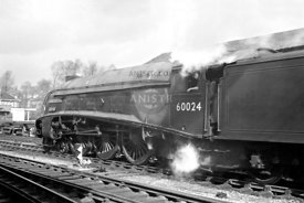 Steam loco A4 60024 Exeter St Davids