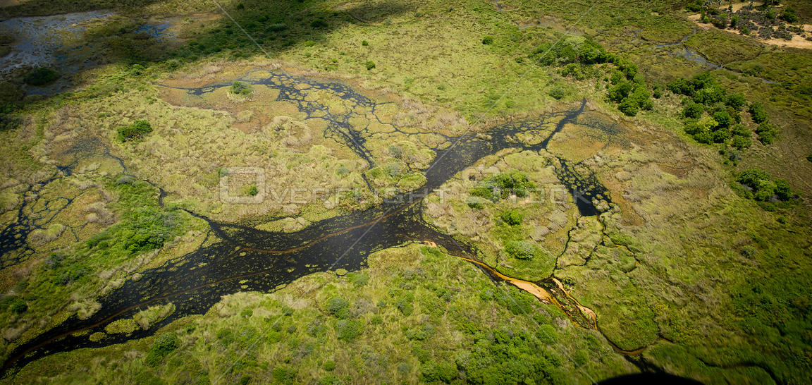 Aerial landscape photograph of the Okavango Delta, Botswana, November 2008