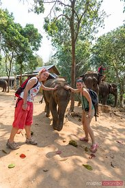 Laos, Luang Prabang. European tourists caressing an elephant