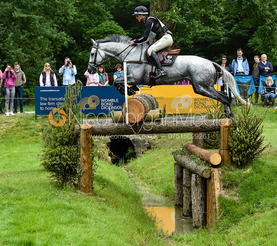 Andrew Nicholson and SWALLOW SPRINGS, Equitrek Bramham Horse Trials 2018