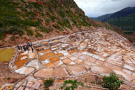 Group of tourists visiting the salt evaporation terraces at Las Salineras, Maras, near Cusco, Peru