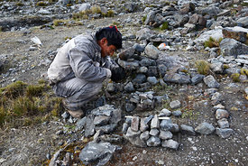 A young man arranges stones in the form of a house and plot of land before a challa / blessing ceremony, Qoyllur Riti festival, Peru