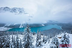 Peyto lake in winter, Banff National Park, Canada