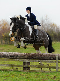 Jumping a hunt jump at Dene Bank Farm - The Cottesmore Hunt at Dene Bank Farm 3-12