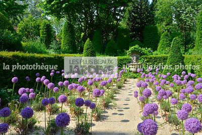 la phototh que les plus beaux jardins jardin agapanthe le plus grand choix de photos de jardin. Black Bedroom Furniture Sets. Home Design Ideas