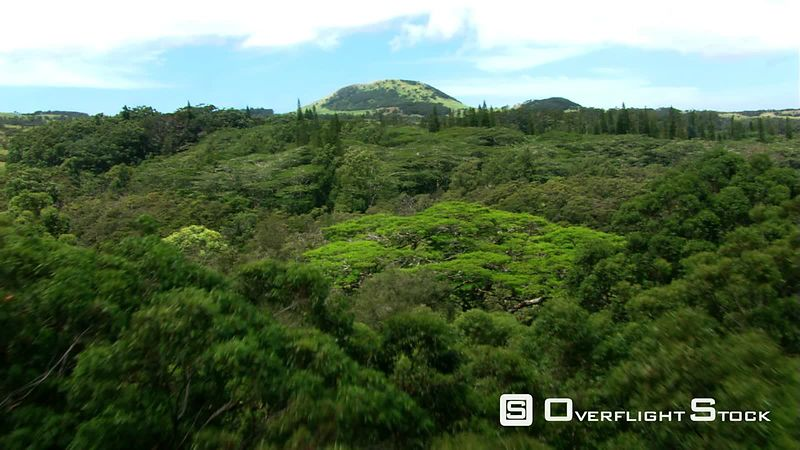 Flying over tropical vegetation toward hilltop in Hawaii