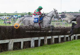 Race 5 Open Maiden - Meynell and South Staffs Point to Point 2014