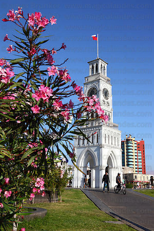 Moorish style clock tower , Plaza Prat , Iquique , Region I , Chile