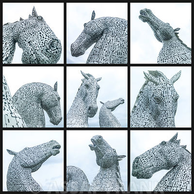 Collage of Kelpies in black and white