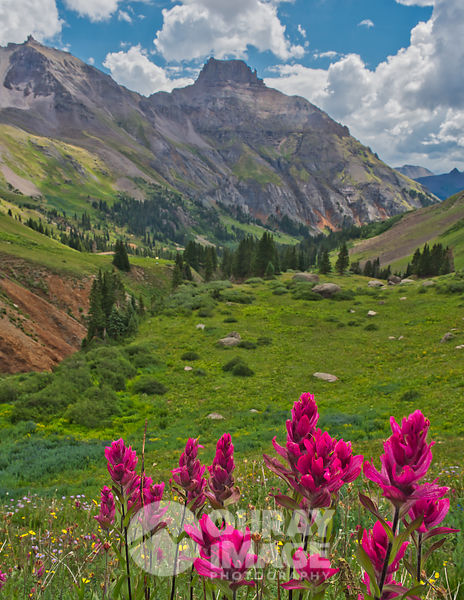 Sneffels Mountain Range, Yankee Boy Basin