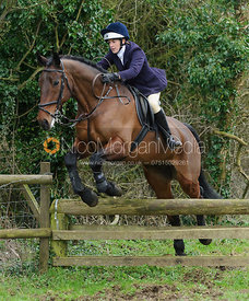 Frankie Wyatt jumping a hunt jump near Knossington Spinney