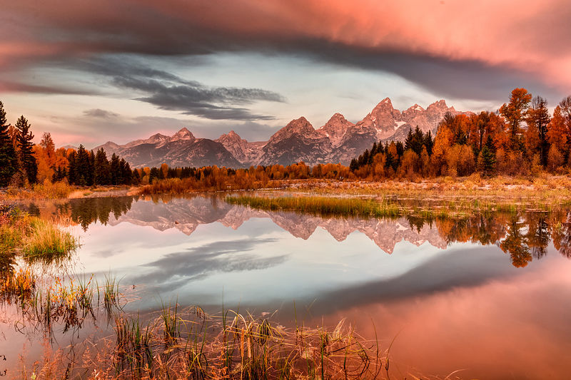 Schwabacher Morning-2
