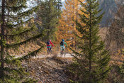 Two people on mountain bikes in  the Fanes Sennes Prags Nature Park near Schluderbach Carbonin in the South Tyrol, Italy.