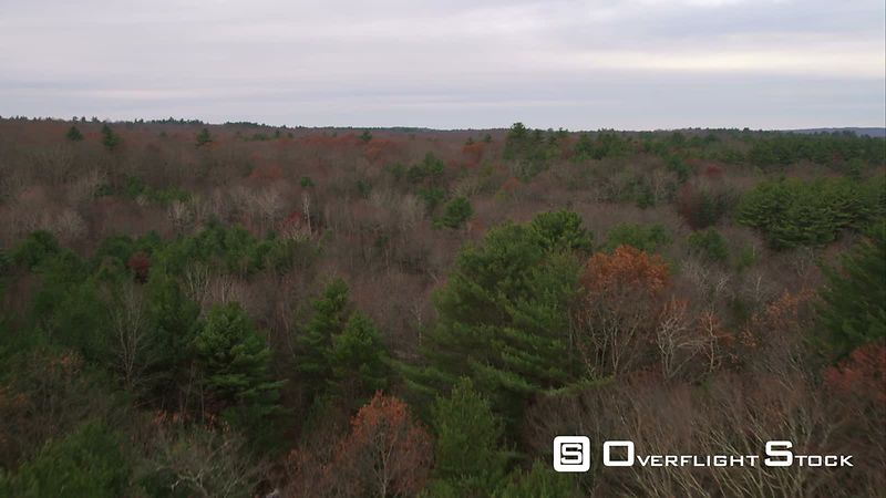 Forests Near Scituate Reservoir in Western Rhode Island. Shot in November