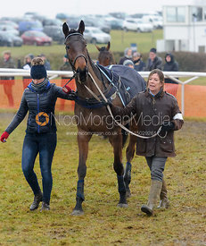 The Parade Ring - Race 8 - Maiden - Midlands Area Club Point-to-point 2017, Thorpe Lodge 29/1