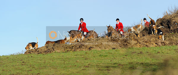 The Belvoir Hunt at Hill Top Farm 4/2
