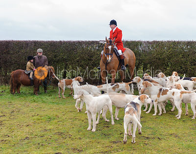 The Cottesmore Hunt at Sawgate Farm 30/12 photos