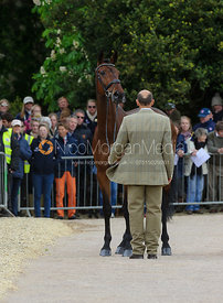 Bill Levett and SHANNONDALE TITAN - First Horse Inspection, Mitsubishi Motors Badminton Horse Trials 2014