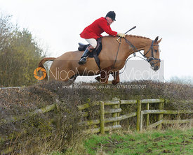 John Holliday jumping a hedge with the The Belvoir Hounds at Ingarsby Hall 3/2