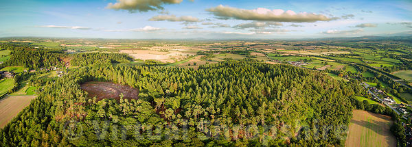 Nesscliffe Hill & Hillfort (Panorama)