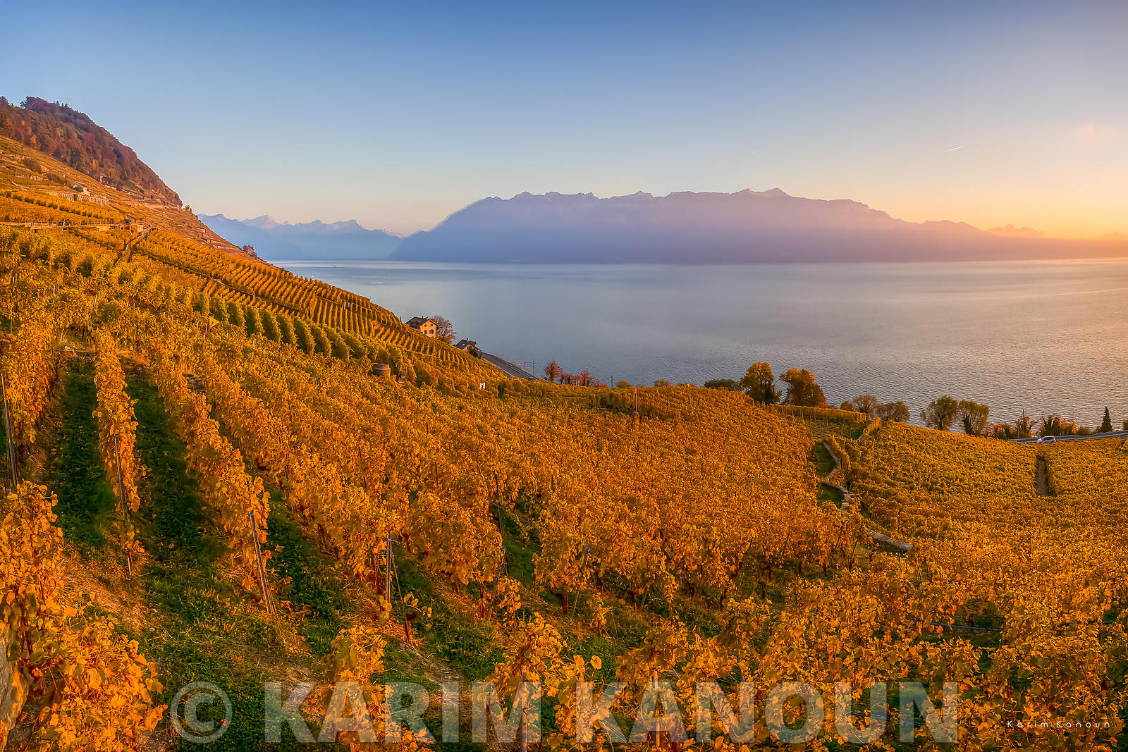 Golden vineyards with mountains - Lavaux | Autumn