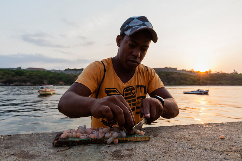 Fisherman Preparing Shrimp Bait