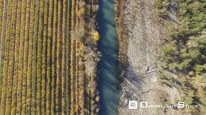 Aerial view of fruit trees crops at river Durance valley, filmed by drone, Remollon, France