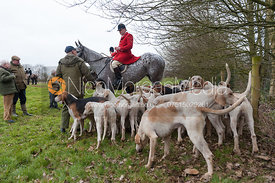 Peter Collins and the Quorn foxhounds