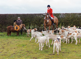 Isobel Crouch and her Mother Nat with Huntsman Andrew Osborne MFH and the Cottesmore foxhounds.