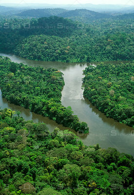 Amazon rainforest in Brazil. Jari River tributary of Amazon