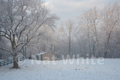 Canyon_Farm_Winter-NAW_3763-December_25_2012