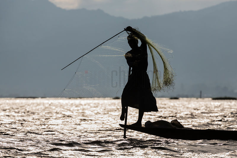 Fisherman Checking his Nets for Fish