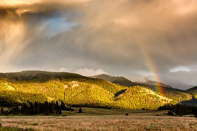 Sawtooth Rainbow