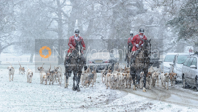 Fitzwilliam and Woodland Pytchley Hunts at Milton Park 31/1 photos
